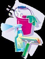 Lucida/lava pavimento fai da te con acido citrico - vivere verde