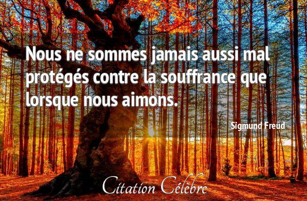 Citation Amour et vulnérabilité (Sigmund Freud) - CITATION CÉLÈBRE