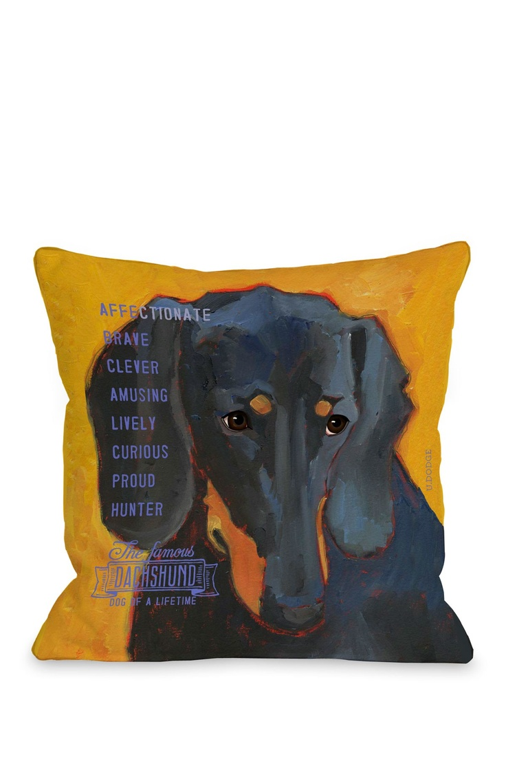 best daschund object of collection images on pinterest  - dachshund