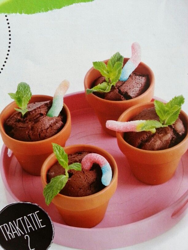 Chocoladecake bloempotjes.