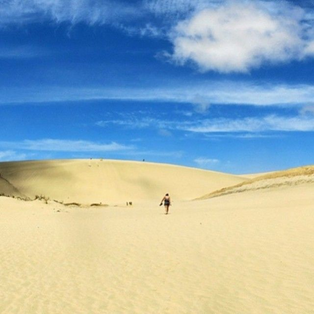 If we told you that these sand dunes can be found in New Zealand - would you believe us? They can be found in Cape Reigna at the very top of New Zealand's north island! #xbase #travel #instapassport #newzealand #nzmustdo #nz #kiwi #sand #wanderlust #photoftheday #traveling #backpacking #hostellife #instatravel #love #amazing #travelbug #instagood #instalike