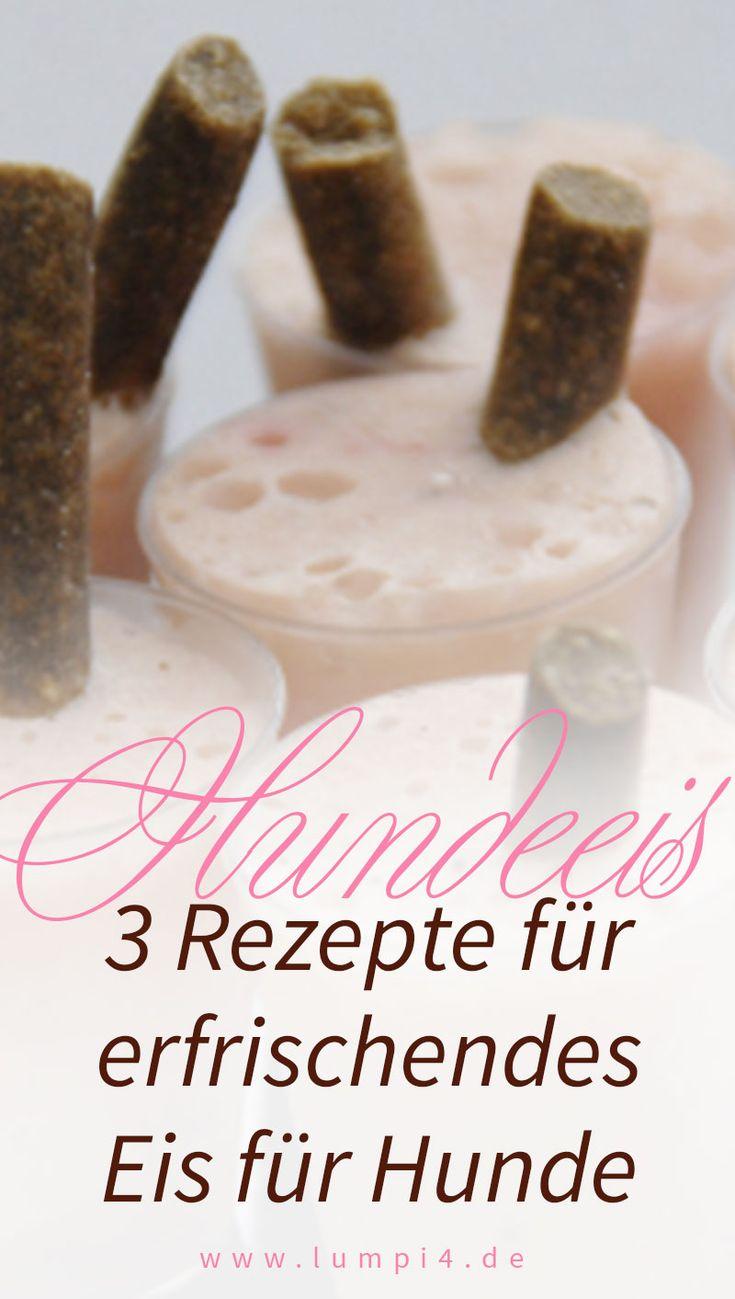 3 Rezepte für ein erfrischendes Eis für Deinen Hund   Leberwurst-Joghurt- Eis …
