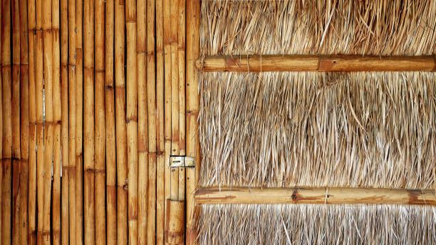 Front View Of Traditional House With Bamboo Door And Thatched Wall Traditional House Roof Architecture Thatched Roof
