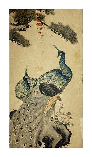 Korean+Peacocks+at+FramedArt.com