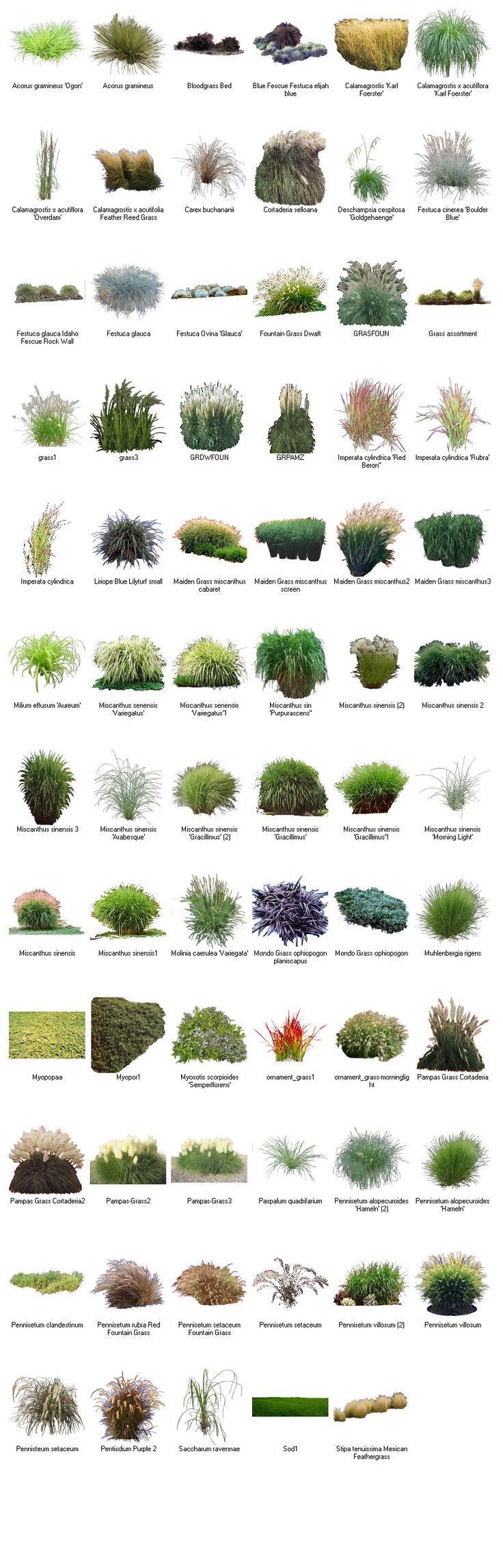 Best 25+ Landscaping software ideas on Pinterest