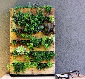 zahradka z palety, recyklace palet, staré palety, co s paletou, výkup palet, paleta euro