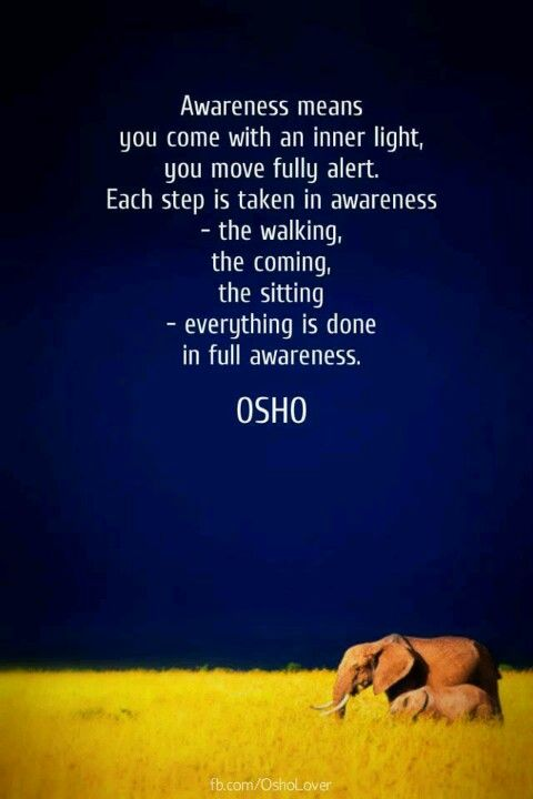 Awareness means... repinned by http://My-Daily-Quote.com