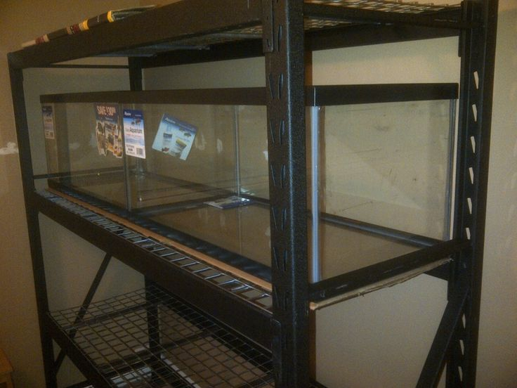 24 best images about fish breeding setups on pinterest for Fish tank rack