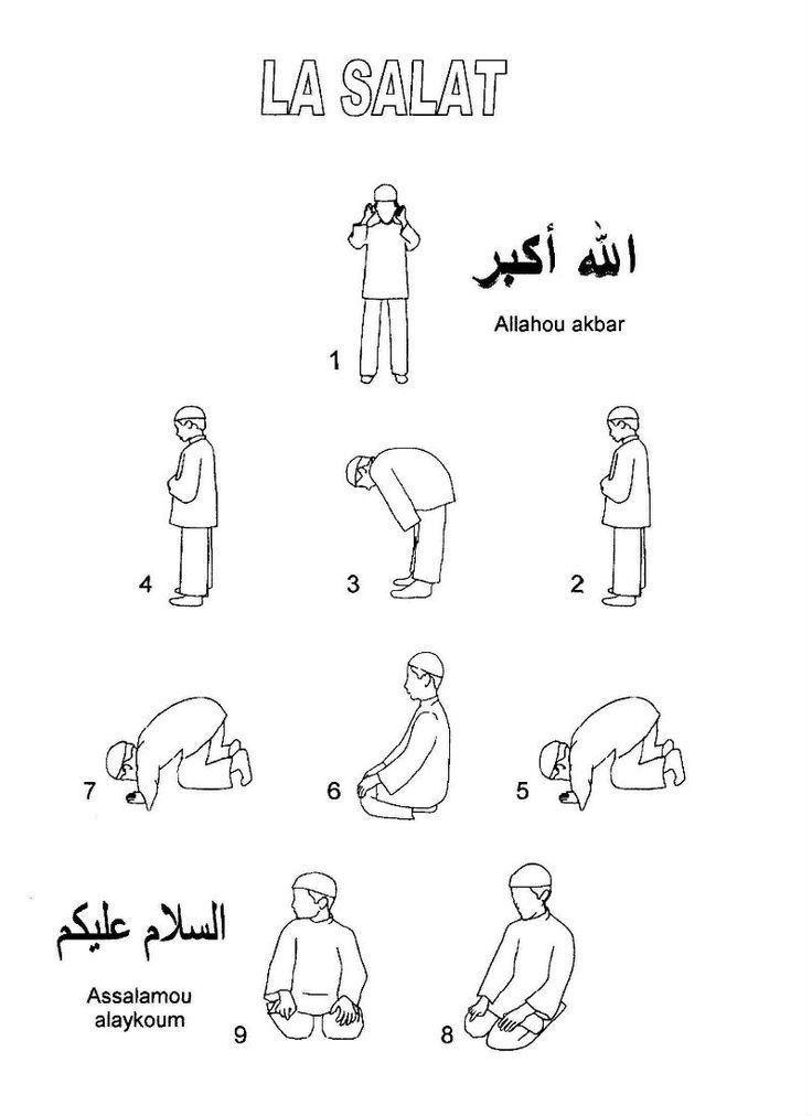 29 best Islamic Studies/ Pillars of Islam images on