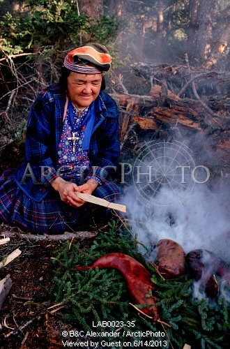 Image of at an innu autumn hunting camp, enen, smokes beaver meat over an open fire. southern labrador, canada. by ArcticPhoto