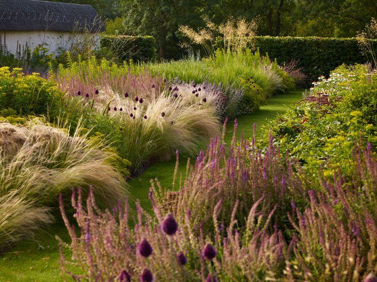213 best Ornamental grass designs images on Pinterest