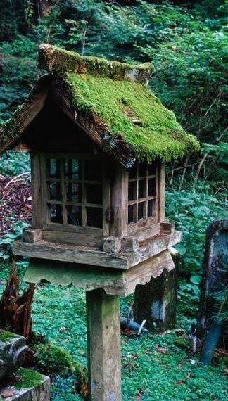 Moss-roofed birdhouse.