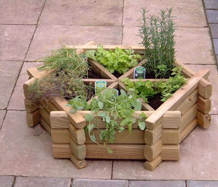 Horta em estrutura de madeira.