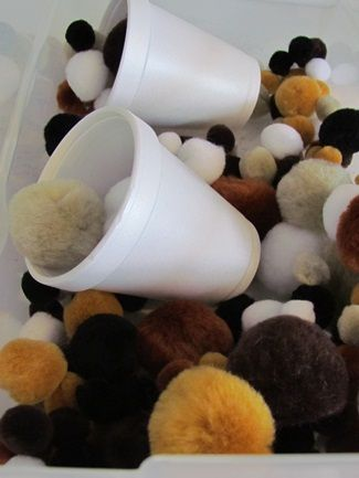 The focus of our third work box was a little groundhog sensory play… We simply filled a container with brown pom-poms, cups and spoons for the children to play with, sort, and and manipulate! - Pinned by @PediaStaff – Please Visit http://ht.ly/63sNt for all our pediatric therapy pins