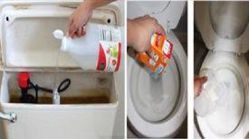 Elle verse du vinaigre blanc dans la cuvette des toilettes … La Raison ? Vous…