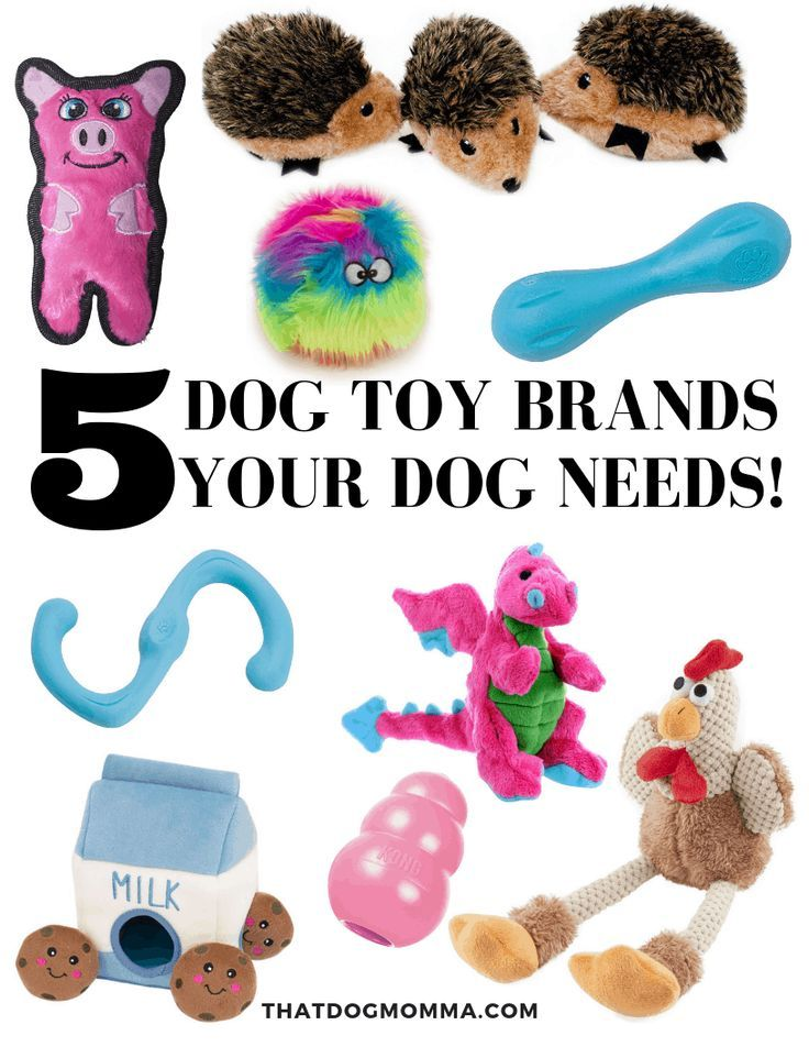 5 Dog Toy Brands Your Dog Needs To Stay Entertained Thatdomomma