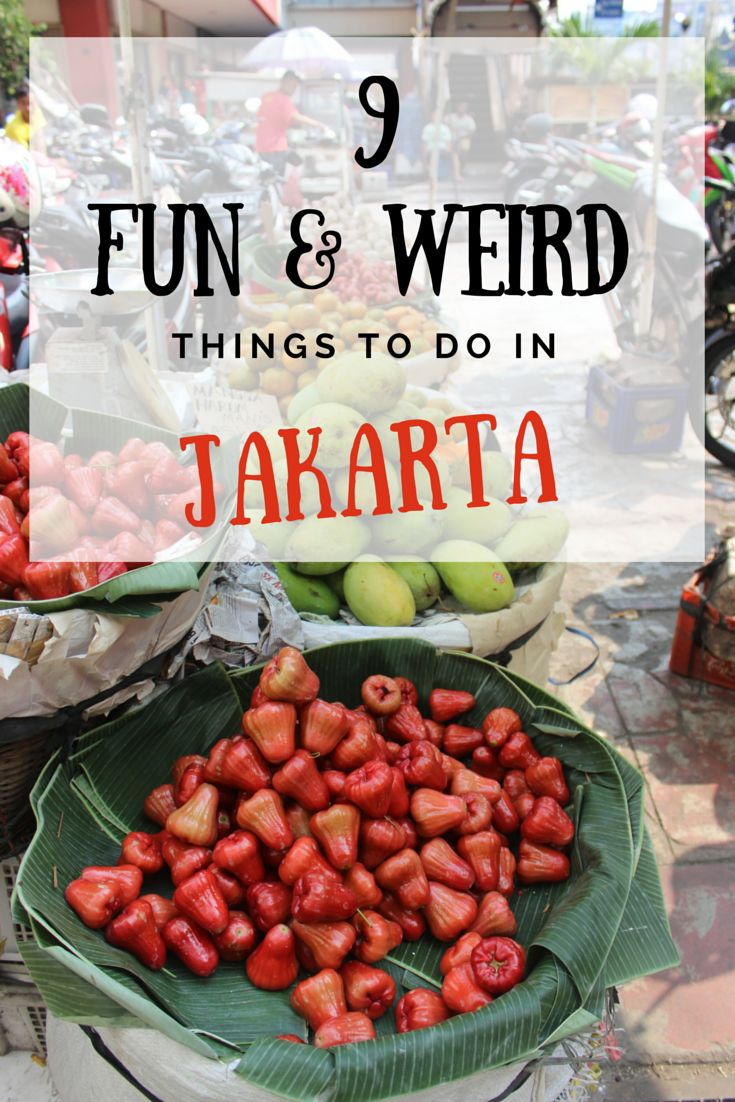 Travel the World - Indonesia | 9 Fun & Weird Things to do in Jakarta