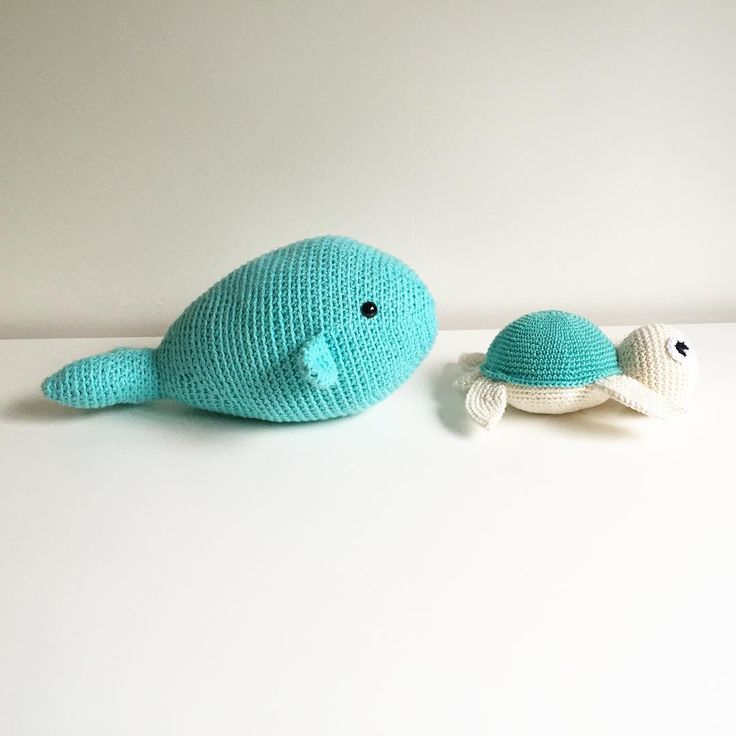 Good morning everyone!! Mr. Whale and Mrs. Turtle didn't want to get out of the…