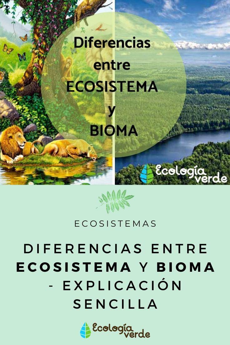 Diferencias Entre Ecosistema Y Bioma Ecosistemas Bioma Biomas