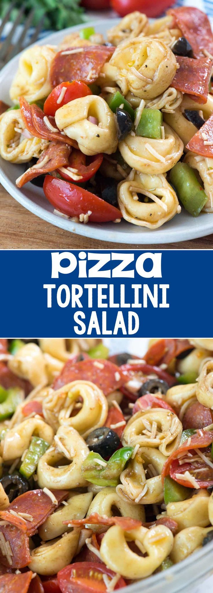 Pizza Tortellini Salad - this easy pasta salad recipe is full of pizza flavor with cheese tortellini, pepperoni, bell peppers, olives, tomatoes and a homemade balsamic dressing! It's perfect for a summer potluck!