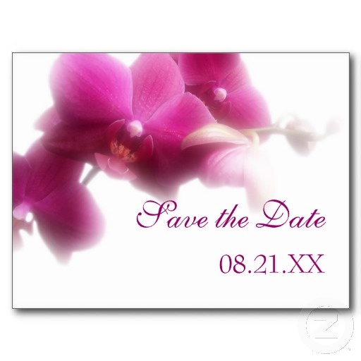 Pink Orchid Save the Date Announcement Postcard #savethedate #radiantorchid