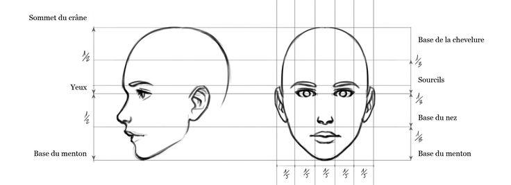 Dans cet article je vous propose un mini-cours d'anatomie pour réaliser une tête dans les bonnes proportions. Cours de sculpture :D'où vient l'erreur? En effet, avez-vous remarq…