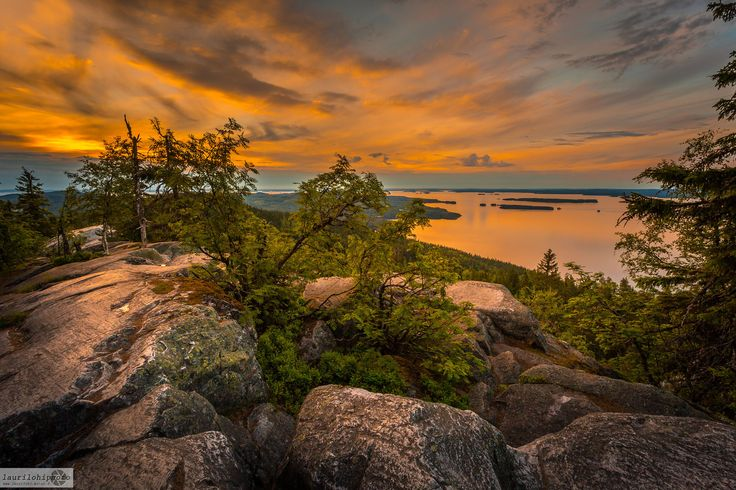 """Sunset at Koli National park, Eastern Finland. Taken few days ago.  <p><a href=""""www.facebook.com/laurilohiphoto"""">Follow me on Facebook</a></p>"""