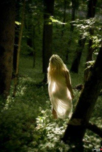 In giro per la foresta, coperta di veli.