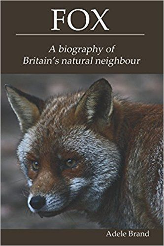 Fox: A biography of Britain's natural neighbour: Adele Brand: 9781549901713: AmazonSmile: Books