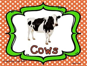 Learn more about cows with simple text and pictures. It is hard to find books that are not too long to use with kindergarten students. This power point describes some facts about cows and the products they give us. I use this power point in my own classroom to introduce some new vocabulary like wheat, barley and leather.This power point is great supplement to any farm unit.