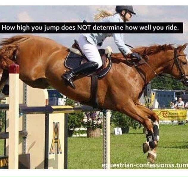 1000+ Horse Jumping Quotes on Pinterest | Horse quotes ...
