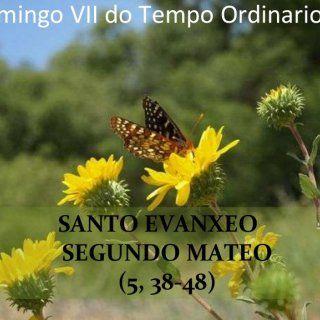 SANTO EVANXEO SEGUNDO MATEO (5, 38-48) Domingo VII do Tempo Ordinario (A)   Naquel tempo, díxolles Xesús aos seus discípulos: -  ‑ Tendes oído que se vos. http://slidehot.com/resources/dom-vii-ordinario-a.30974/