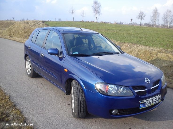 Nissan Almera 1,5 Dci 2004 rok Full opcja