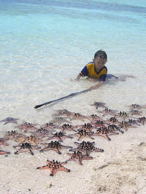 Un enfant garde sa collection d'étoiles de mer sur le sable blanc de Bunaken, en face de Manado. L'étoile de mer à cornes est une espèce d'étoile de mer tropicale couverte de petites cornes noires. Mesurant en moyenne quinze centimètres de diamètre, elle vit sur les fonds sableux non loin des plages. #photographie #voyage #indonesie