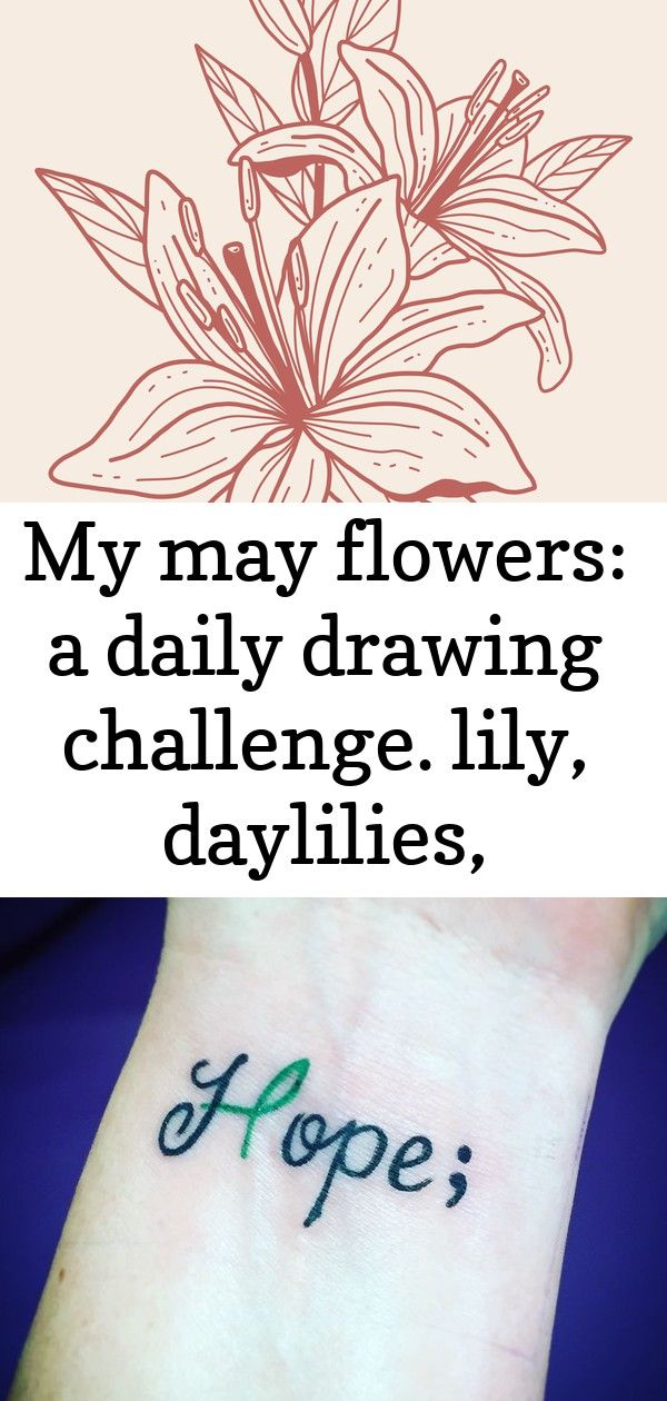 My May Flowers a daily drawing challenge. Lily, daylilies