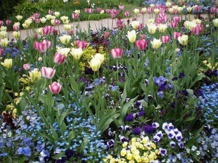 Frühjahr im Hermannshof.