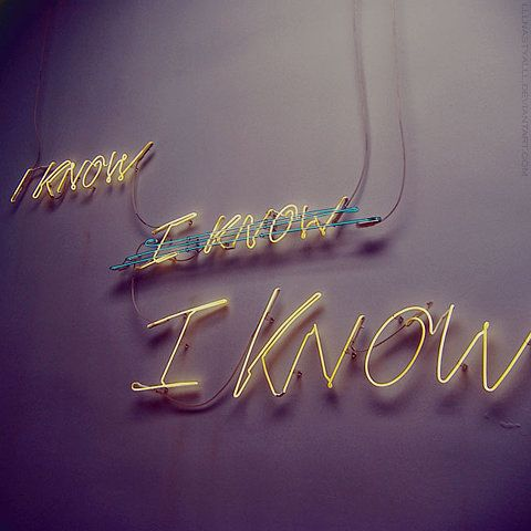 Wisest is she who knows she does not know (Jostein Gaarder)