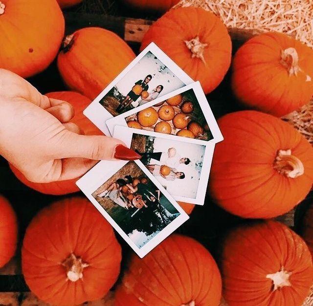 Autumn Photography, Fall Photoshoot