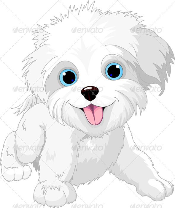 Playful lap-dog  #GraphicRiver         Illustration of Cute Playful lap-dog     Created: 29June12 GraphicsFilesIncluded: JPGImage #VectorEPS Layered: No MinimumAdobeCSVersion: CS Tags: Havanese #LapDog #animal #canine #cartoon #character #clipart #clip-art #cute #dog #domesticanimals #fun #illustration #isolated #lap-dog #mammal #pet #pets #play #playful #puppy #small #smiling #standing #stuffedanimal #tail #vector #white