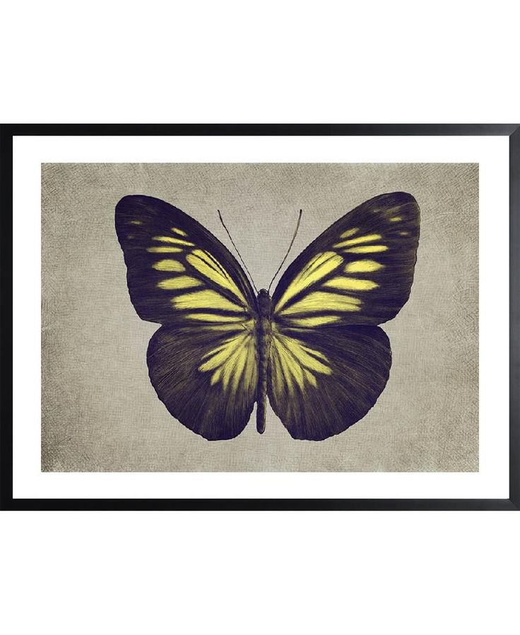 Papillon (yellow) VON Eric Fan now on JUNIQE!