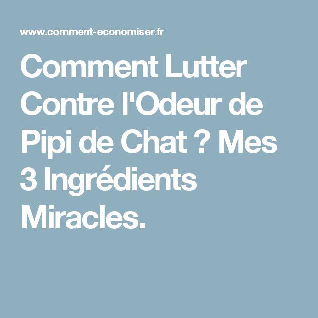 Comment Lutter Contre l'Odeur de Pipi de Chat ? Mes 3 Ingrédients Miracles.