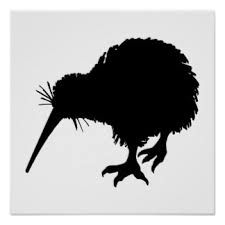 Image result for kiwi bird tattoo