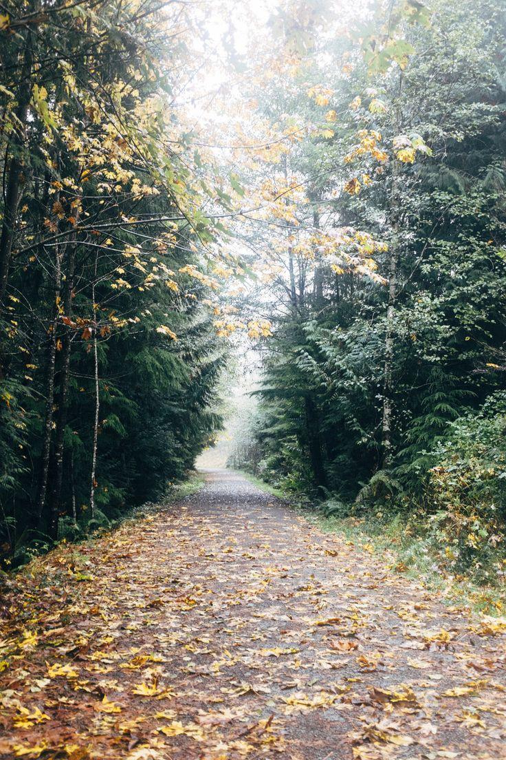 Cowichan Kinsol Trestle - Path Explore Vancouver Island, British Columbia Island General Shoppe Blog