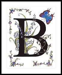B For Bluebells And A Blue Hairstreak Butterfly Framed Print by Stanza Widen