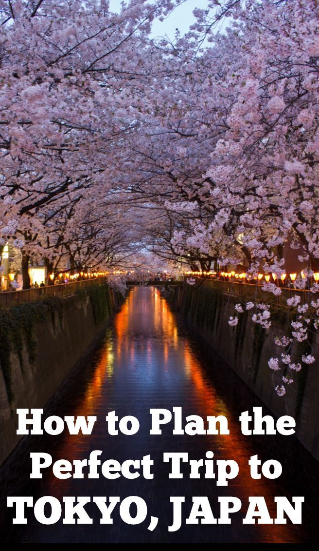 The ultimate, comprehensive and best free guide Tokyo travel!!
