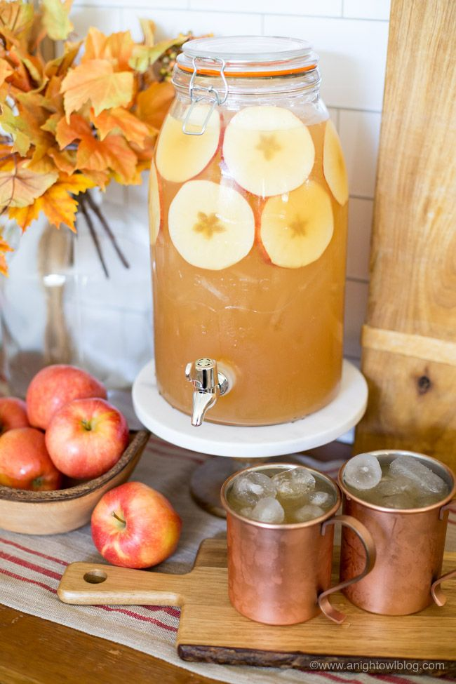 Spiced Apple Rum Punch created by Kimberly of A Night Owl Blog for Cost Plus World Market. #WorldMarket Cocktail Recipes