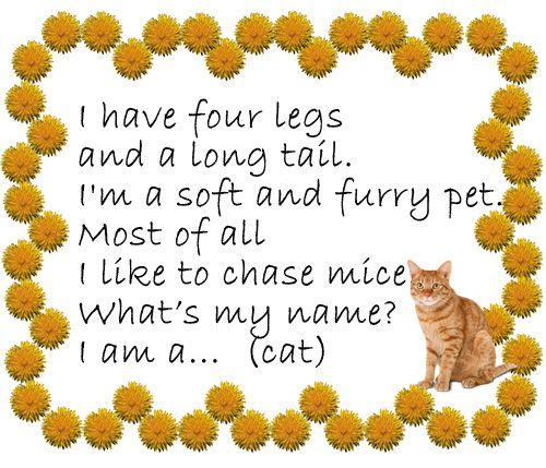 Стишок-загадка про кошку (cat)