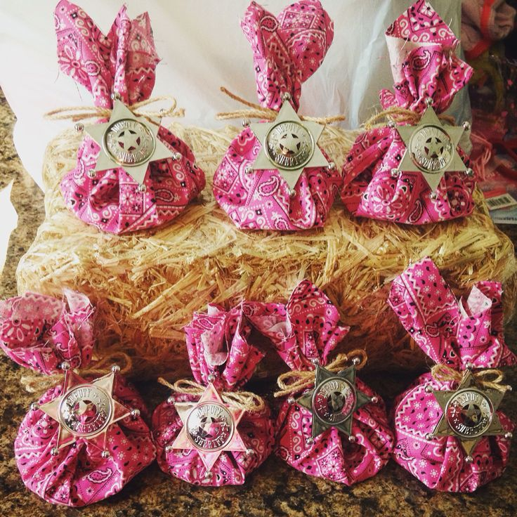 Sheriff Callie party goodie bags