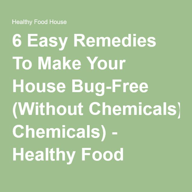 6 Easy Remedies To Make Your House Bug-Free (Without Chemicals) - Healthy Food House