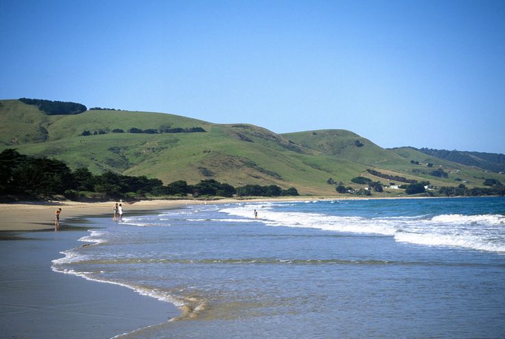Apollo Bay Holidays For Beachside Fun in Great Ocean Road Victoria. http://www.ozehols.com.au/blog/victoria/apollo-bay-holidays-for-beachside-fun/ #Beach #VisitVic #VisitVictoria #VisitApolloBay @OzeHols - Holiday Accommodation - Holiday Accommodation